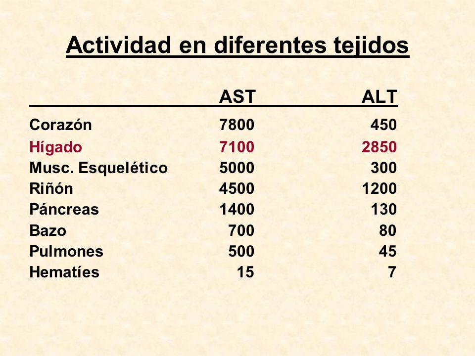 Actividad en diferentes tejidos ASTALT Corazón7800 450 Hígado71002850 Musc. Esquelético5000 300 Riñón45001200 Páncreas1400 130 Bazo 700 80 Pulmones 50