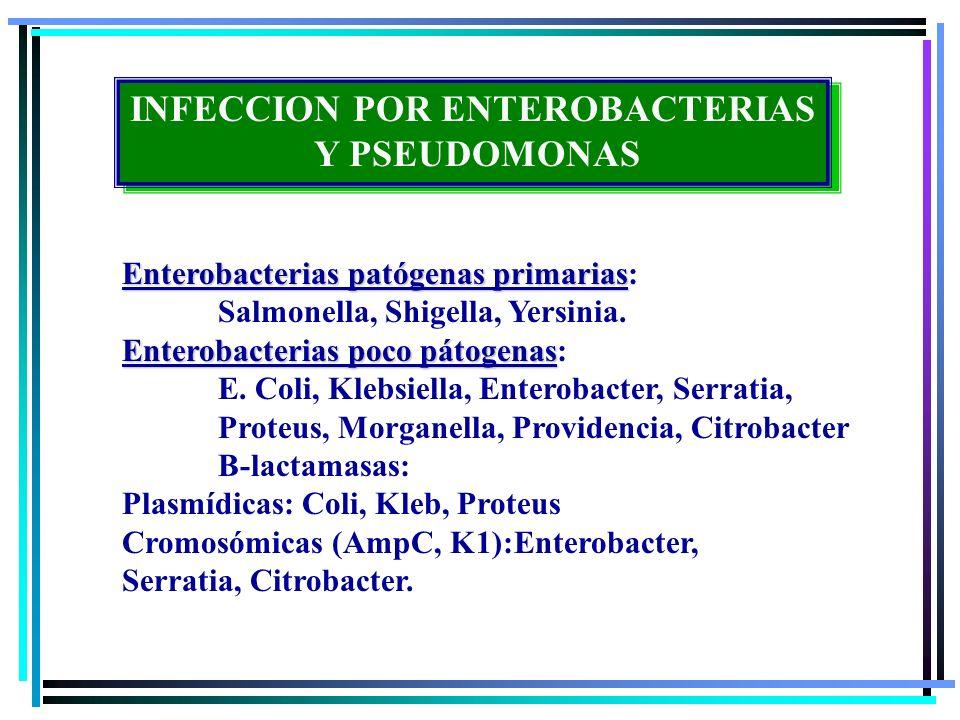 INFECCION POR ENTEROBACTERIAS Y PSEUDOMONAS INFECCION POR ENTEROBACTERIAS Y PSEUDOMONAS Infección por huesped normal: Flora habitual con: Coli, K.Pneumoniae y osytica, Proteus.