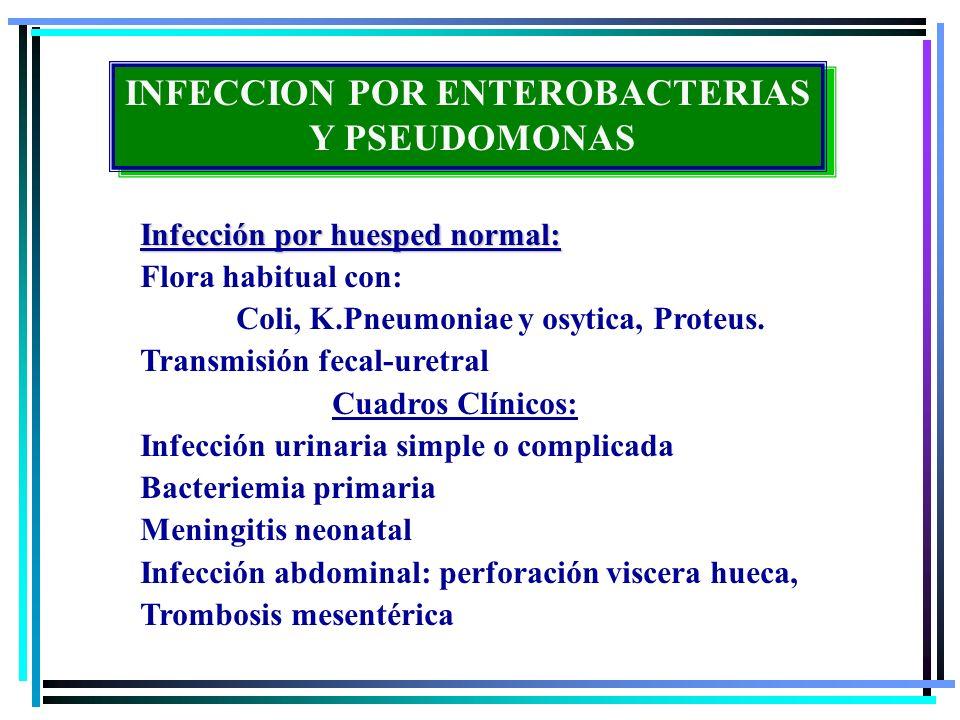 Infección extrahospitalaria en huésped vulnerable: EPOC, Diabetes,alcohol ausencia de fibronectina exopolisacridos, exoenzimas, elastasas Cuadros clínicos: 1-3% neumonías comunitarias 5-10% Bacteriemias primarias 10% Infecciones urinarias INFECCION POR ENTEROBACTERIAS Y PSEUDOMONAS INFECCION POR ENTEROBACTERIAS Y PSEUDOMONAS