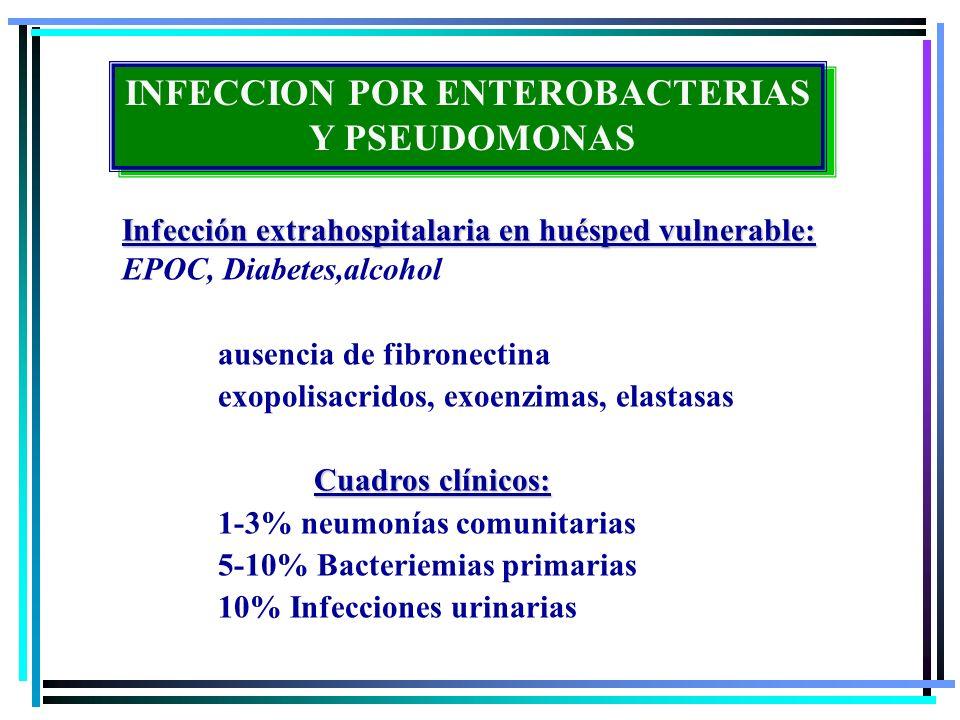 Infección extrahospitalaria en huésped vulnerable: EPOC, Diabetes,alcohol ausencia de fibronectina exopolisacridos, exoenzimas, elastasas Cuadros clín