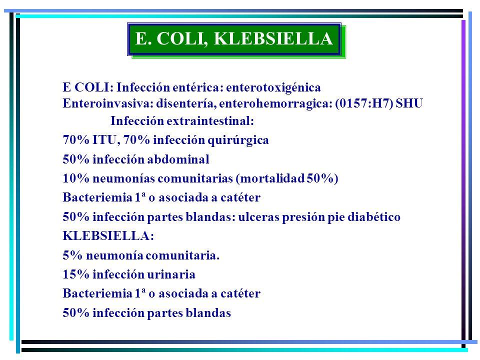 E. COLI, KLEBSIELLA E COLI: Infección entérica: enterotoxigénica Enteroinvasiva: disentería, enterohemorragica: (0157:H7) SHU Infección extraintestina