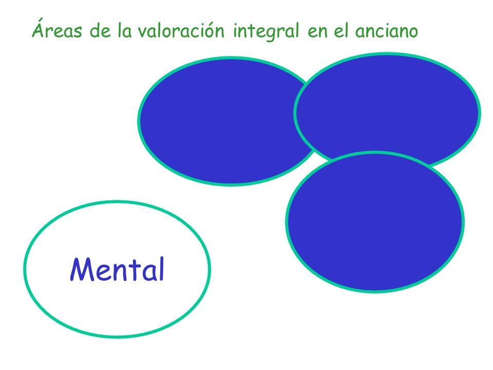 Áreas de valoración mental Estado Cognitivo - Cambios asociados al envejecimiento - Deterioro cognitivo ligero - Estado confusional - Demencia Estado afectivo - Depresión - Ansiedad