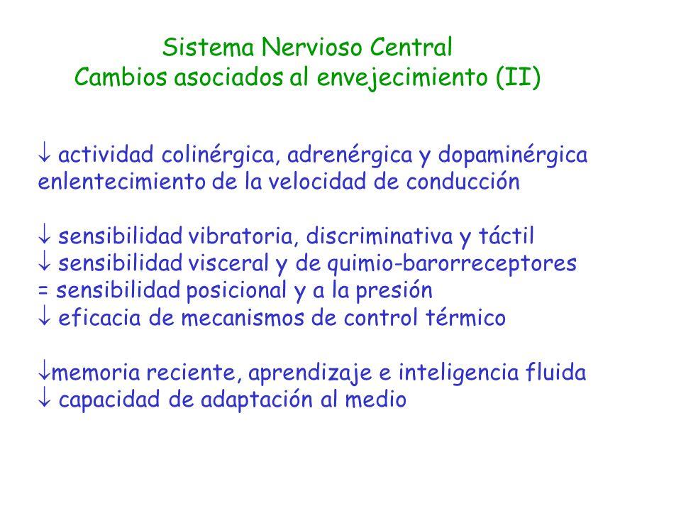 Sistema Nervioso Central Cambios asociados al envejecimiento (II) actividad colinérgica, adrenérgica y dopaminérgica enlentecimiento de la velocidad d