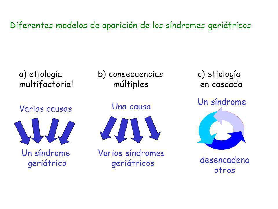 Una causa Varios síndromes geriátricos Varias causas Un síndrome geriátrico Un síndrome desencadena otros a) etiología multifactorial b) consecuencias
