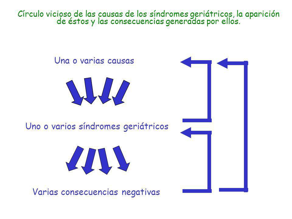 Círculo vicioso de las causas de los síndromes geriátricos, la aparición de éstos y las consecuencias generadas por ellos. Varias consecuencias negati