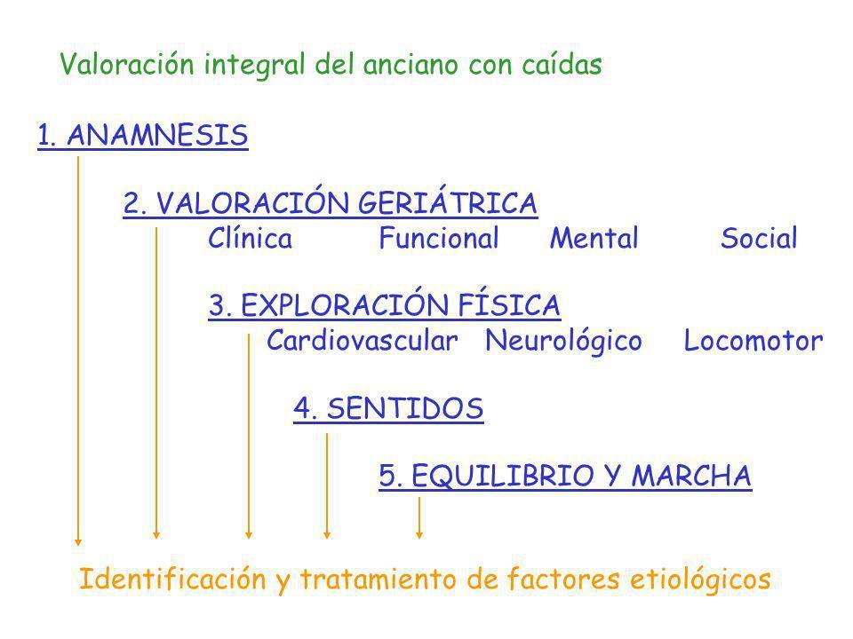 Valoración integral del anciano con caídas 1. ANAMNESIS 2. VALORACIÓN GERIÁTRICA ClínicaFuncionalMentalSocial 3. EXPLORACIÓN FÍSICA Cardiovascular Neu