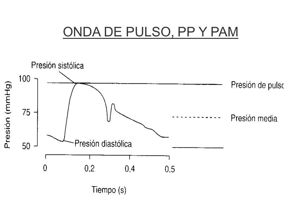 Estudio de Framingham Riesgo cardiovascular según la PP Franklin y cols. Circulation 1999;100:354
