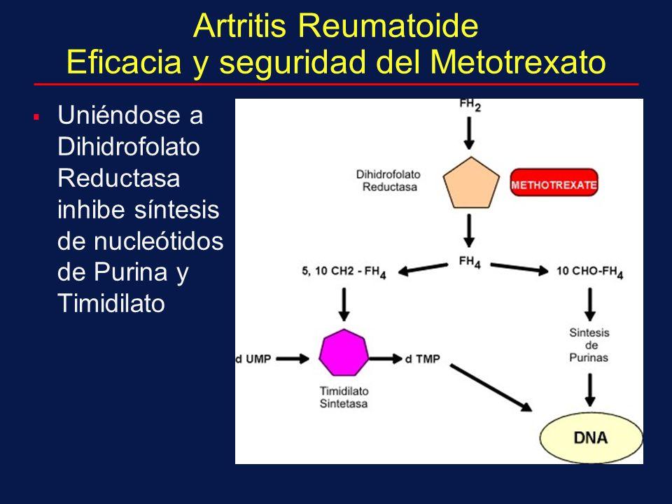 Artritis Reumatoide Eficacia y seguridad del Metotrexato Uniéndose a Dihidrofolato Reductasa inhibe síntesis de nucleótidos de Purina y Timidilato