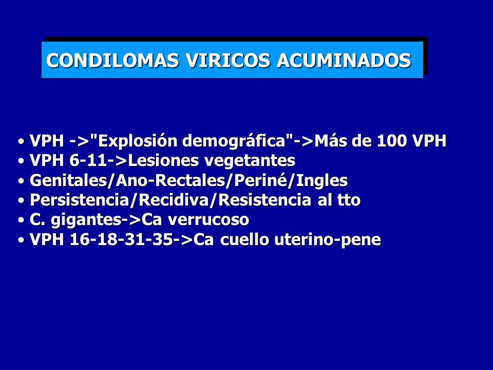 CONDILOMAS VIRICOS ACUMINADOS VPH ->