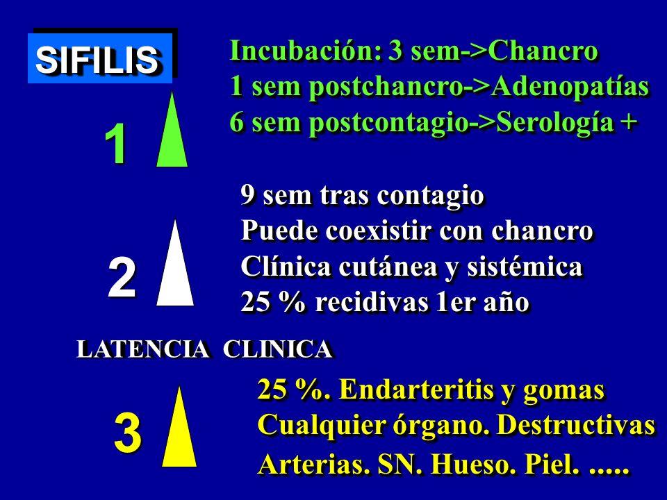 SIFILISSIFILIS 1 2 3 LATENCIA CLINICA Incubación: 3 sem->Chancro 1 sem postchancro->Adenopatías 6 sem postcontagio->Serología + Incubación: 3 sem->Cha