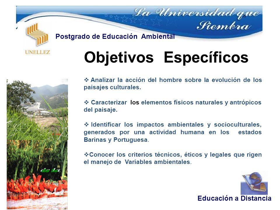 Objetivos Específicos Educación a Distancia Postgrado de Educación Ambiental Analizar la acción del hombre sobre la evolución de los paisajes culturales.