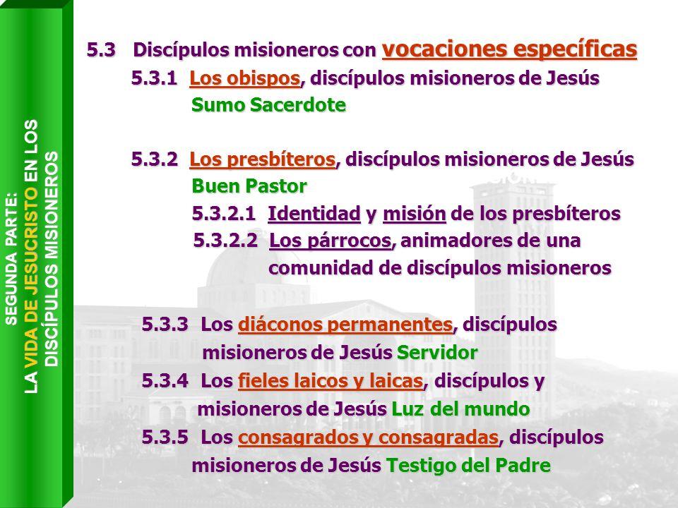 Capítulo VI LA COMUNIÓN DE LOS DISCÍPULOS MISIONEROS EN LA IGLESIA 5.3 Discípulos misioneros con vocaciones específicas 5.3.1 Los obispos, discípulos