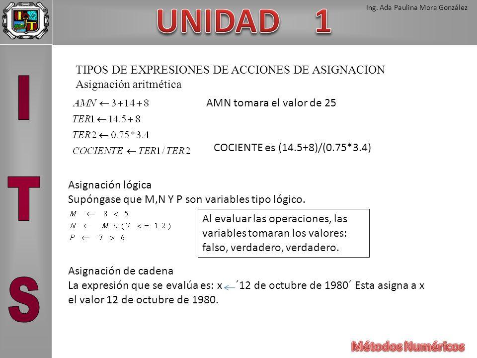 Ing. Ada Paulina Mora González TIPOS DE EXPRESIONES DE ACCIONES DE ASIGNACION Asignación aritmética AMN tomara el valor de 25 COCIENTE es (14.5+8)/(0.