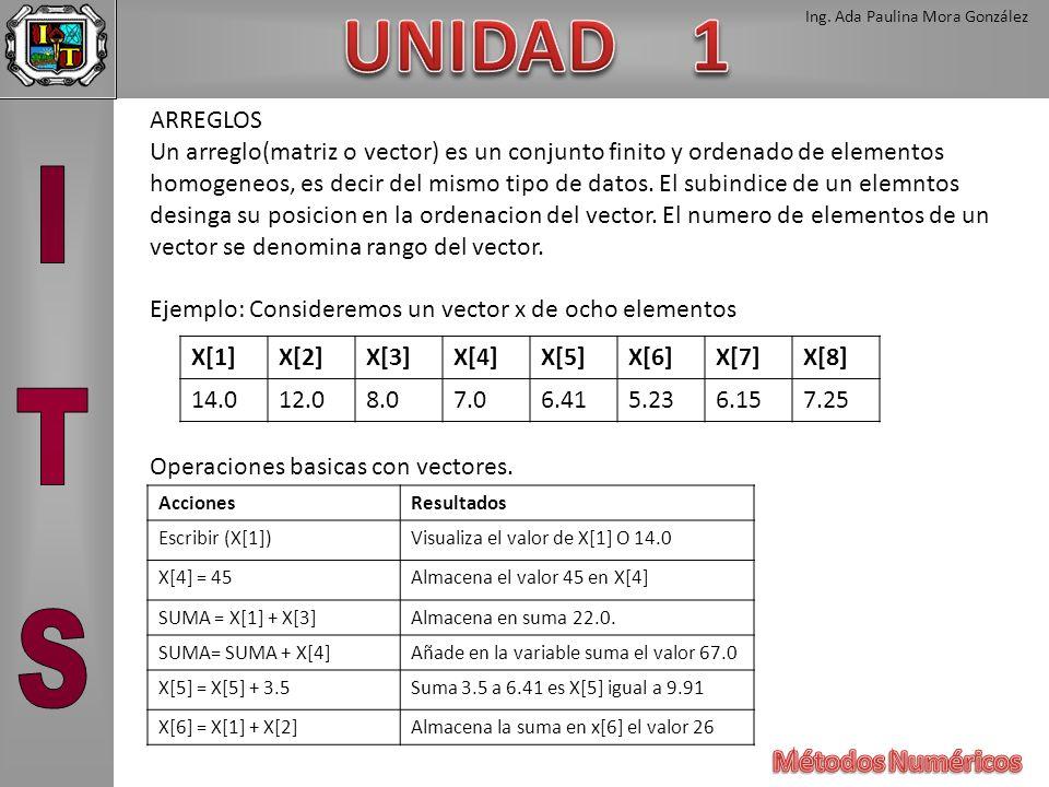 Ing. Ada Paulina Mora González ARREGLOS Un arreglo(matriz o vector) es un conjunto finito y ordenado de elementos homogeneos, es decir del mismo tipo