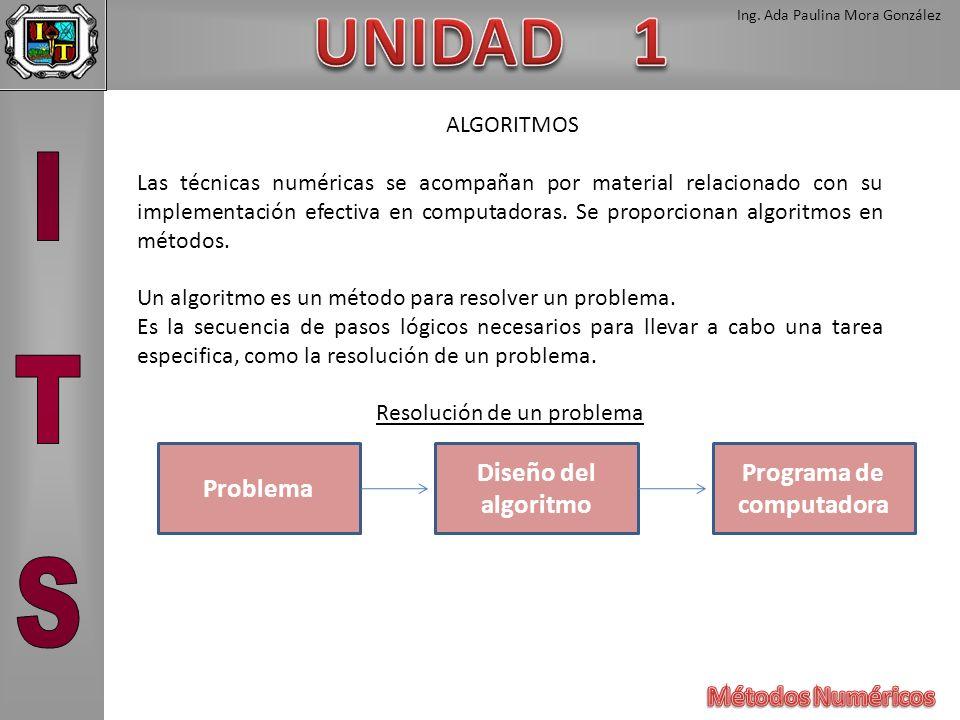 Ing. Ada Paulina Mora González ALGORITMOS Las técnicas numéricas se acompañan por material relacionado con su implementación efectiva en computadoras.