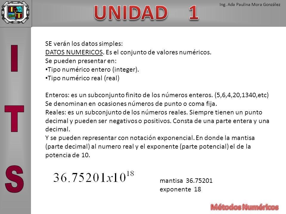 Ing. Ada Paulina Mora González SE verán los datos simples: DATOS NUMERICOS. Es el conjunto de valores numéricos. Se pueden presentar en: Tipo numérico