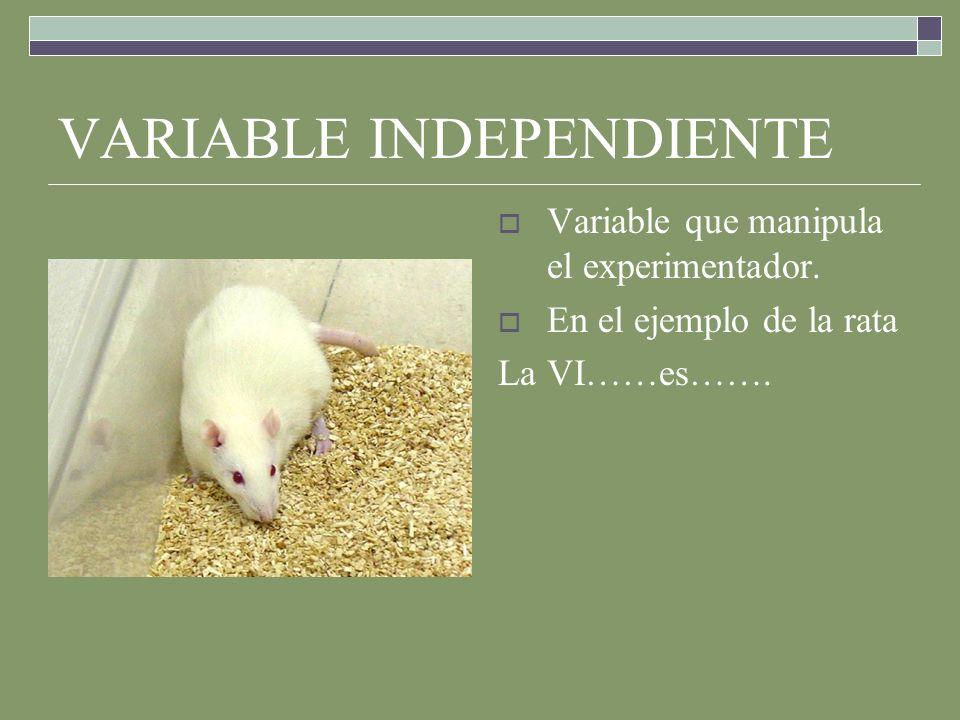 VARIABLE INDEPENDIENTE Variable que manipula el experimentador.