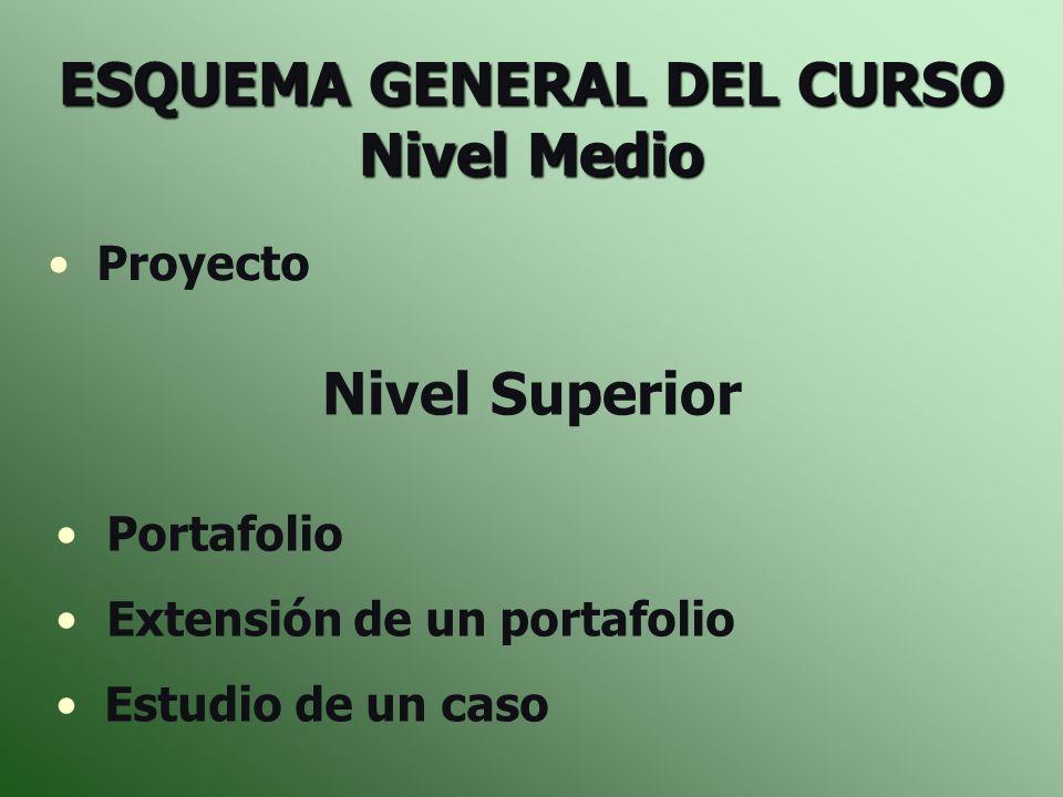 ESQUEMA GENERAL DEL CURSO Nivel Medio Proyecto Nivel Superior Portafolio Extensión de un portafolio Estudio de un caso