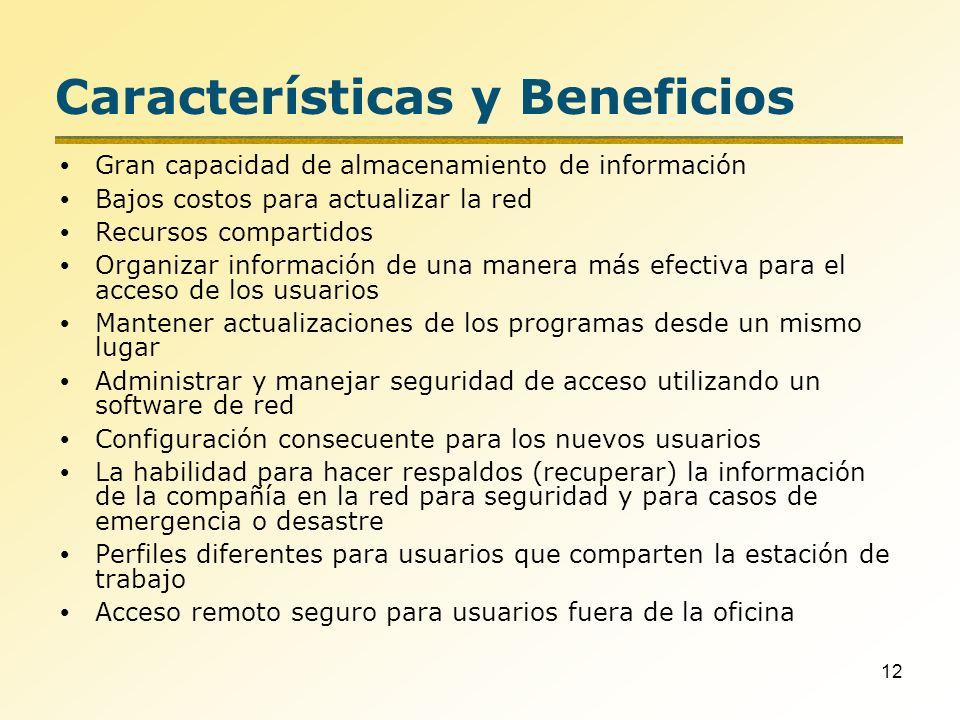 12 Características y Beneficios Gran capacidad de almacenamiento de información Bajos costos para actualizar la red Recursos compartidos Organizar inf