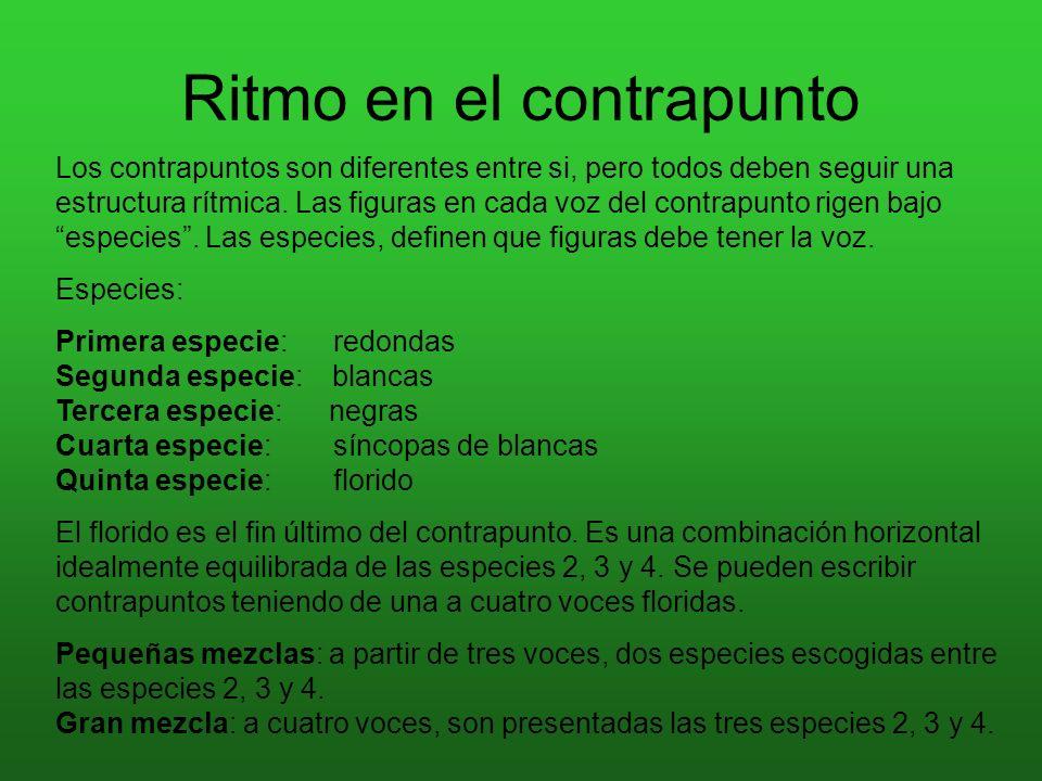 Ritmo en el contrapunto Los contrapuntos son diferentes entre si, pero todos deben seguir una estructura rítmica. Las figuras en cada voz del contrapu