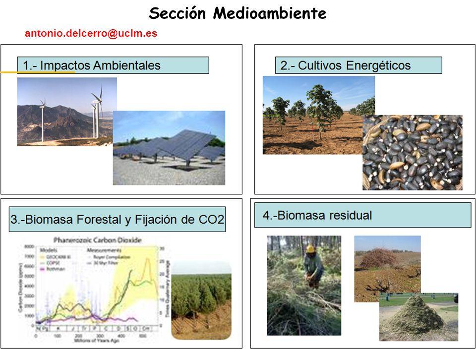 Sección Medioambiente antonio.delcerro@uclm.es