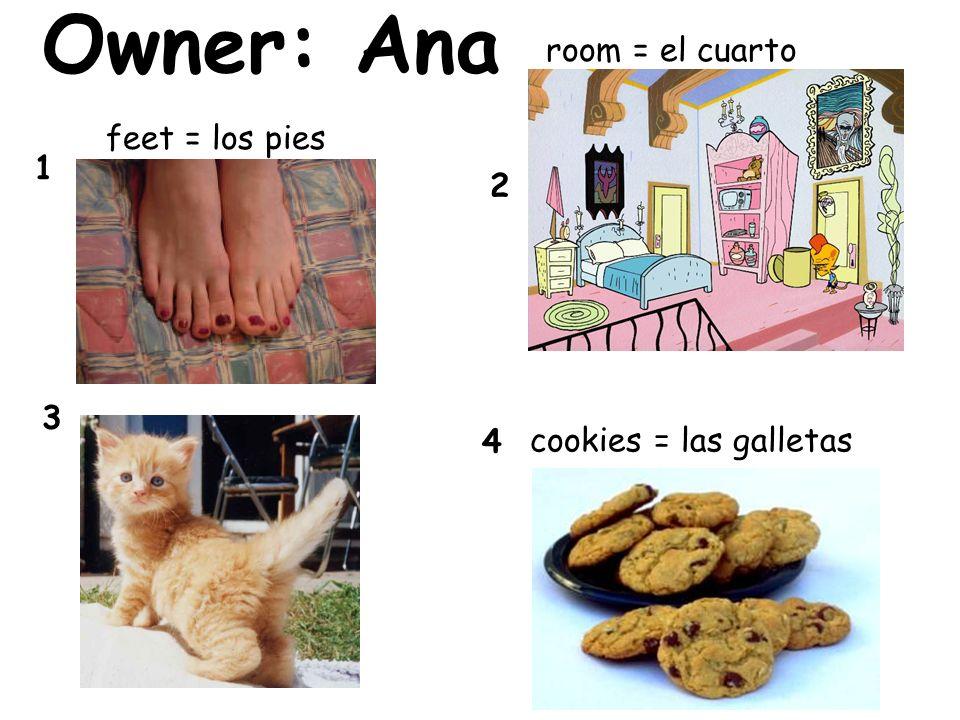 Owner: Ana 4 3 2 1 room = el cuarto feet = los pies cookies = las galletas
