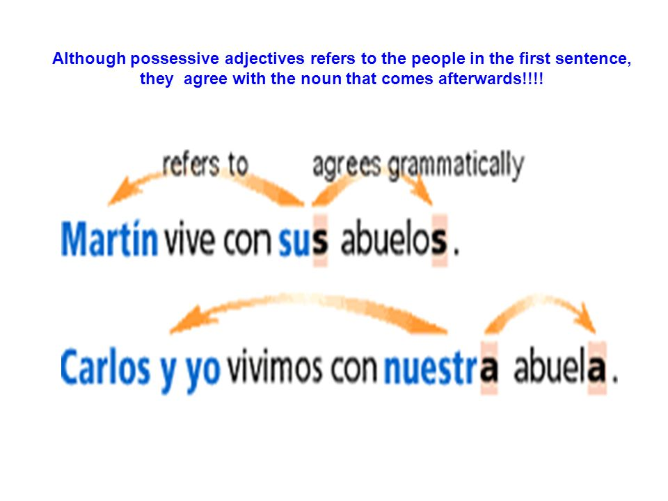 Although possessive adjectives refers to the people in the first sentence, they agree with the noun that comes afterwards!!!!