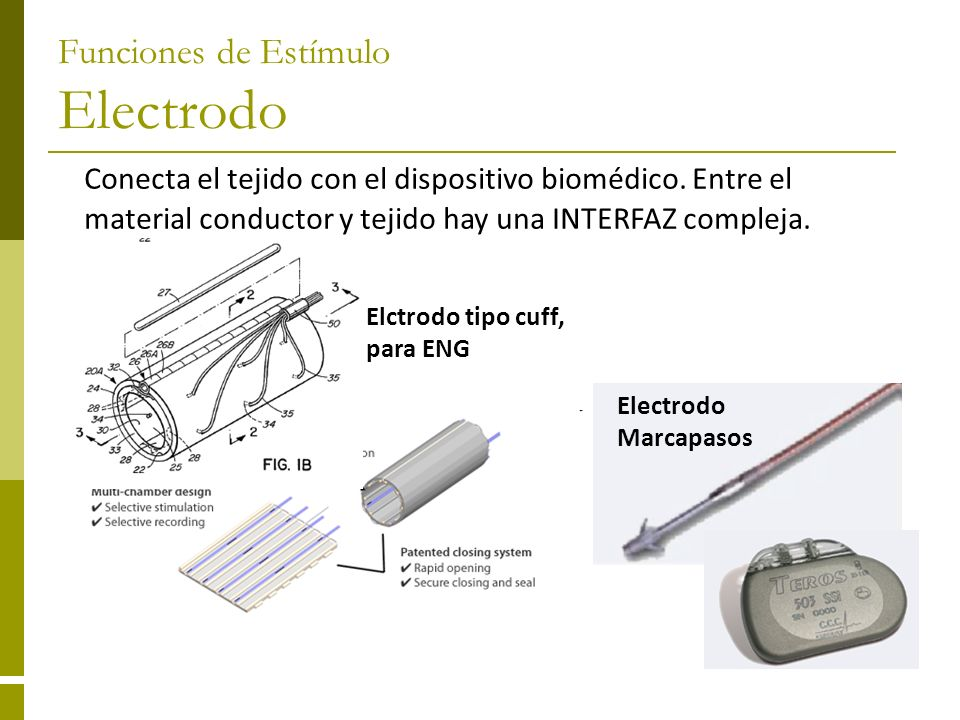 Conecta el tejido con el dispositivo biomédico. Entre el material conductor y tejido hay una INTERFAZ compleja. Electrodo Marcapasos Elctrodo tipo cuf