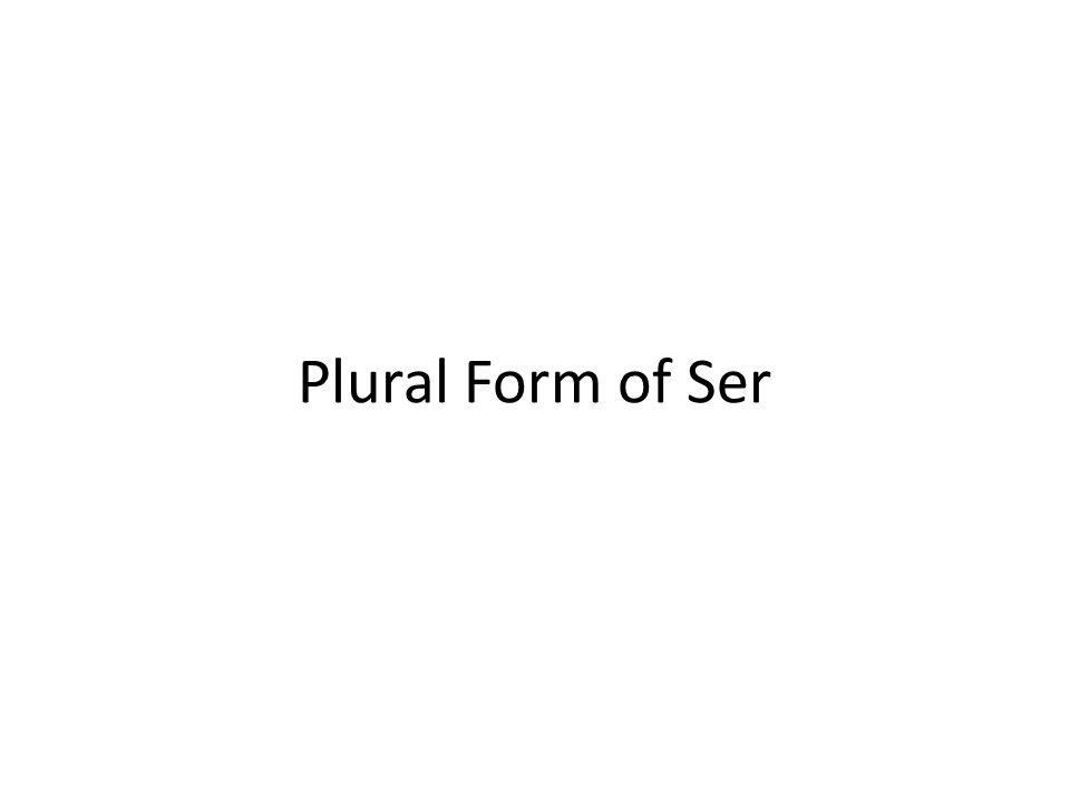 Plural Form of Ser Plural form of ser