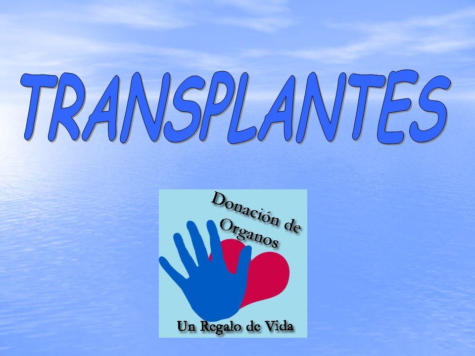 LOS TRANSPLANTES Conseguir que sea posible el transplante de órganos y tejidos es fruto del trabajo de muchas personas, aunque se le considera como al padre de esta técnica a Alexis Carrel.