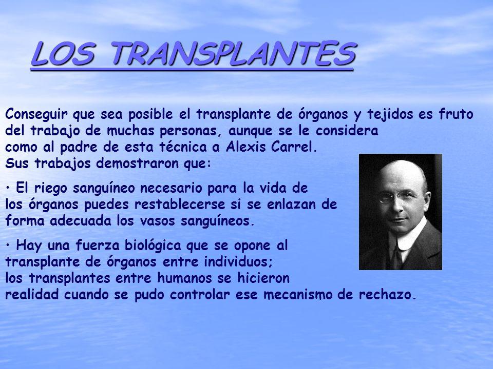 LOS TRANSPLANTES Conseguir que sea posible el transplante de órganos y tejidos es fruto del trabajo de muchas personas, aunque se le considera como al