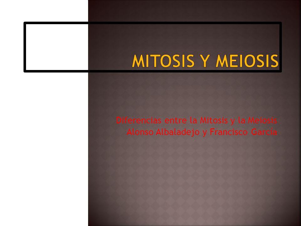 Diferencias entre la Mitosis y la Meiosis Alonso Albaladejo y Francisco García