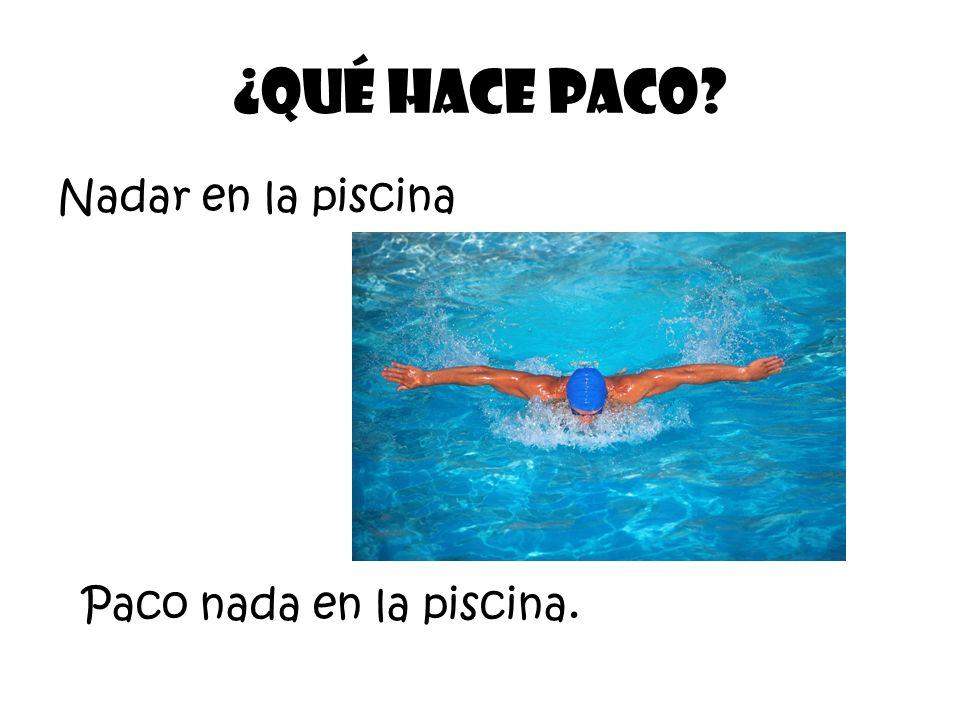 Nadar en la piscina ¿Qué Hace Paco? Paco nada en la piscina.