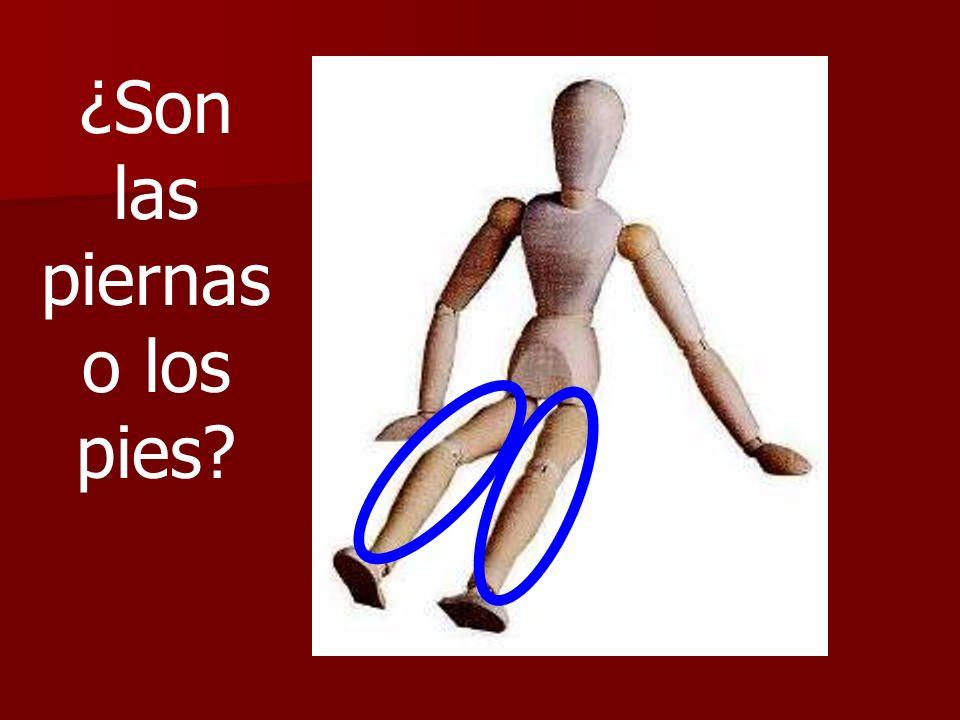 ¿Son las piernas o los pies?