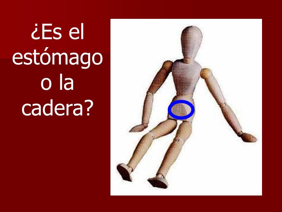 ¿Es el estómago o la cadera?