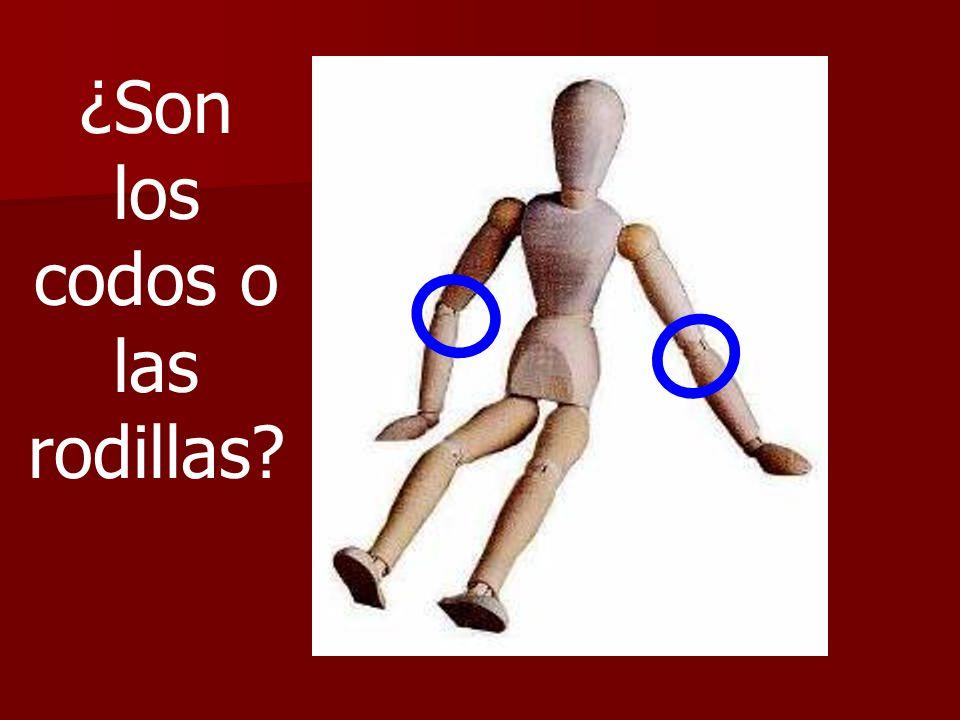 ¿Son los codos o las rodillas?