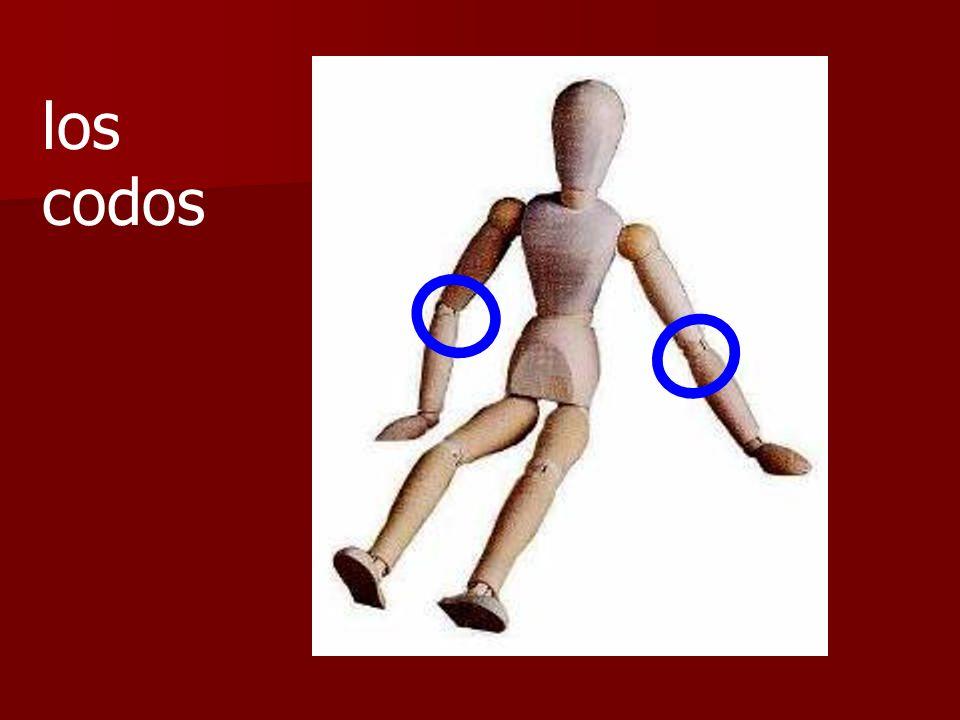 ¿Es el estómago o la espalda?