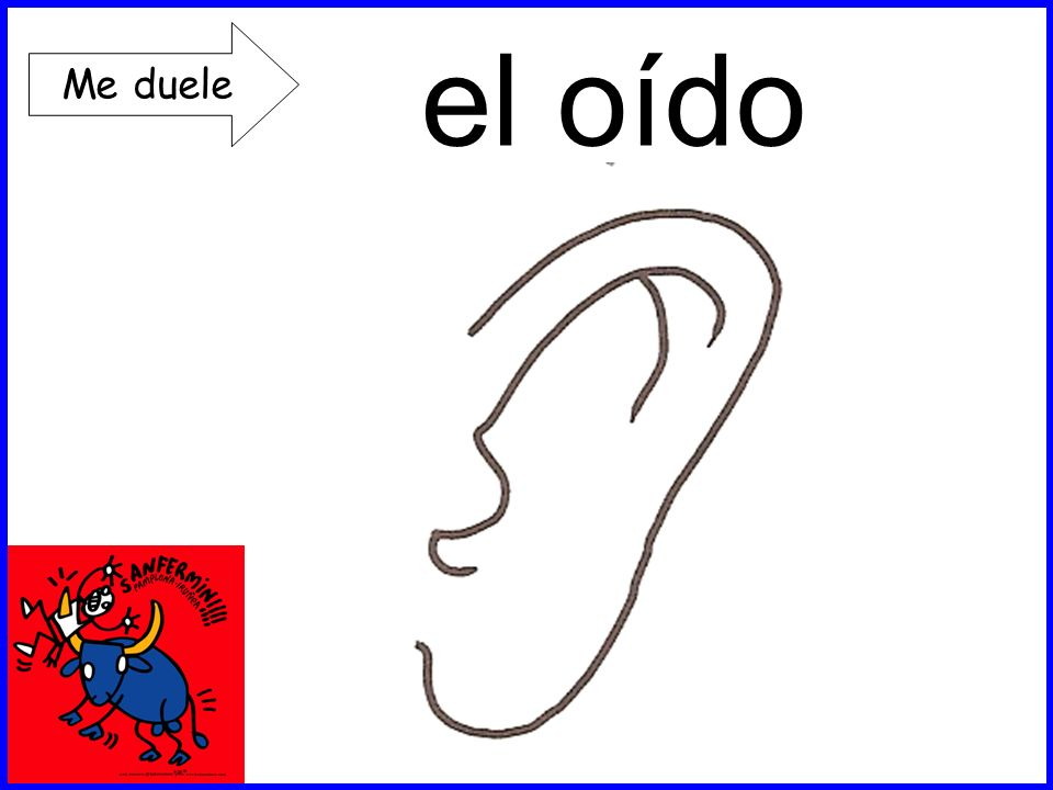el oído