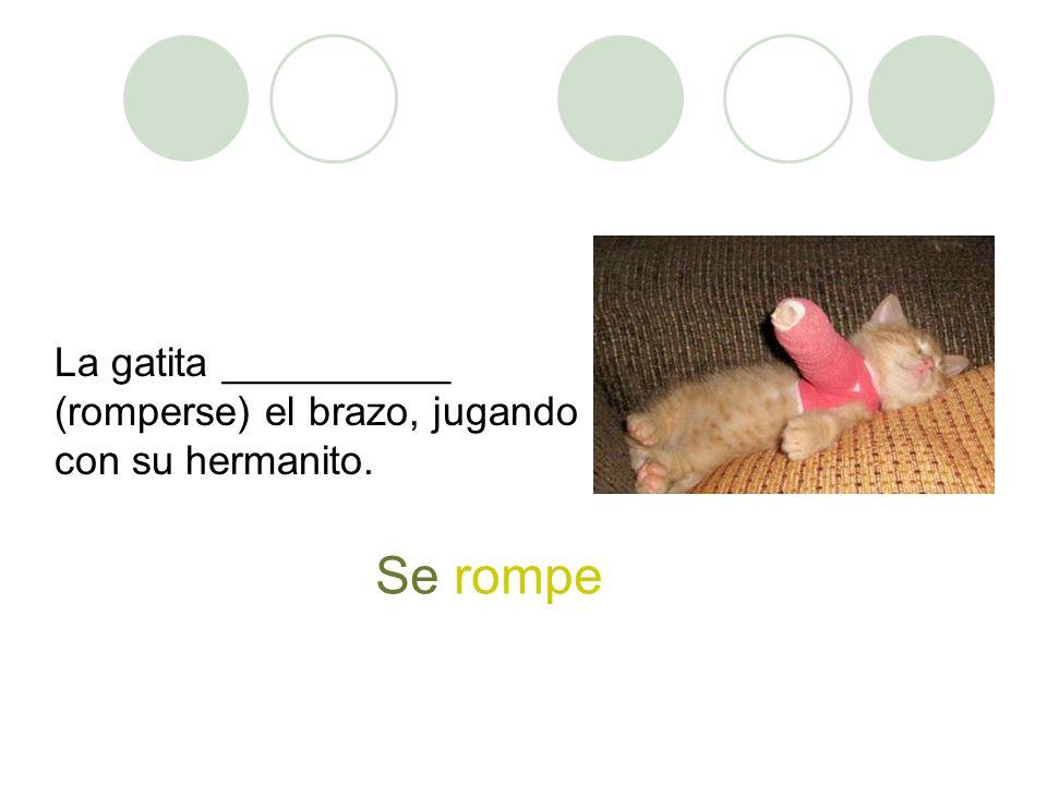 La gatita __________ (romperse) el brazo, jugando con su hermanito. Se rompe