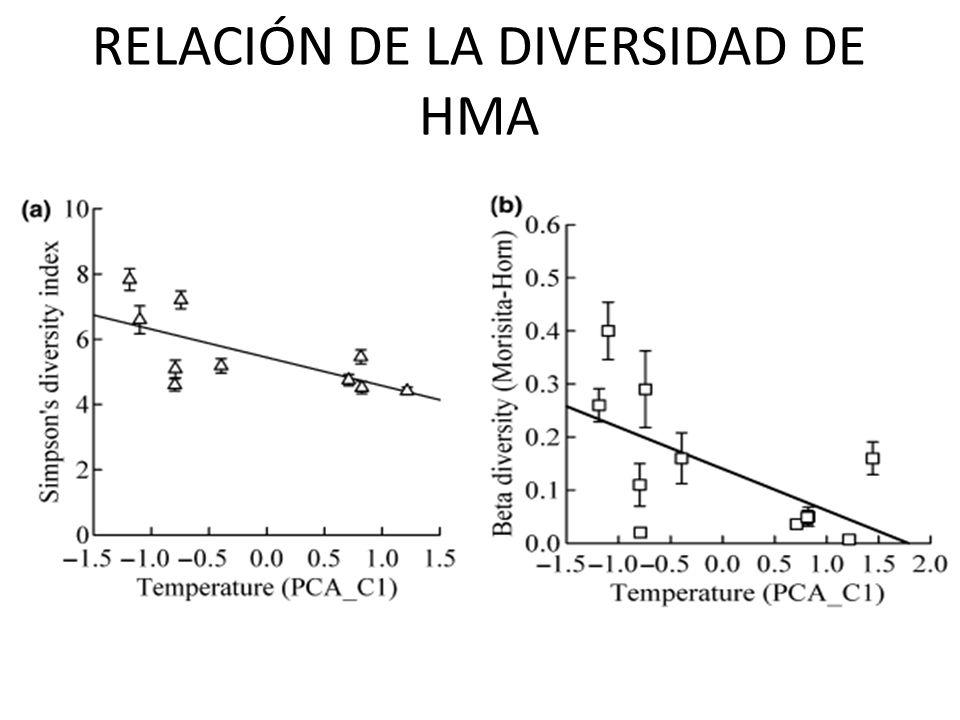 RELACIÓN DE LA DIVERSIDAD DE HMA