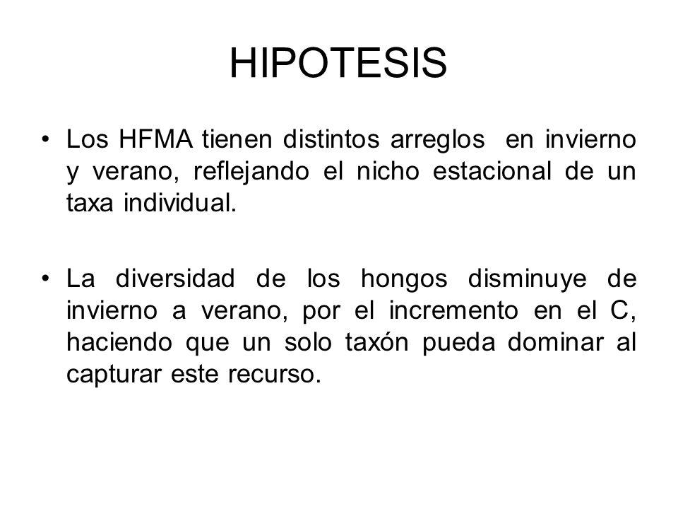 HIPOTESIS Los HFMA tienen distintos arreglos en invierno y verano, reflejando el nicho estacional de un taxa individual. La diversidad de los hongos d