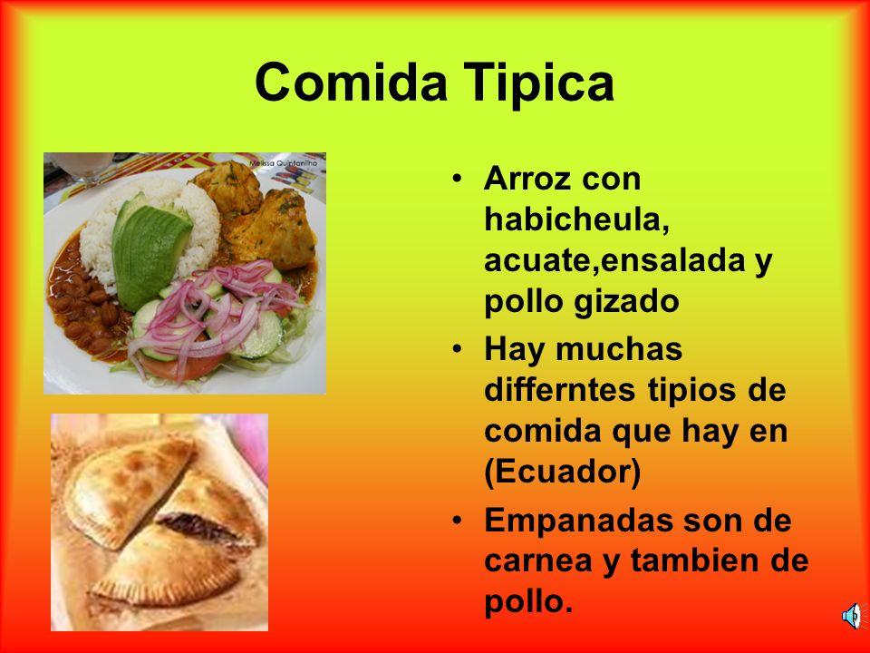 Comida Tipica Arroz con habicheula, acuate,ensalada y pollo gizado Hay muchas differntes tipios de comida que hay en (Ecuador) Empanadas son de carnea