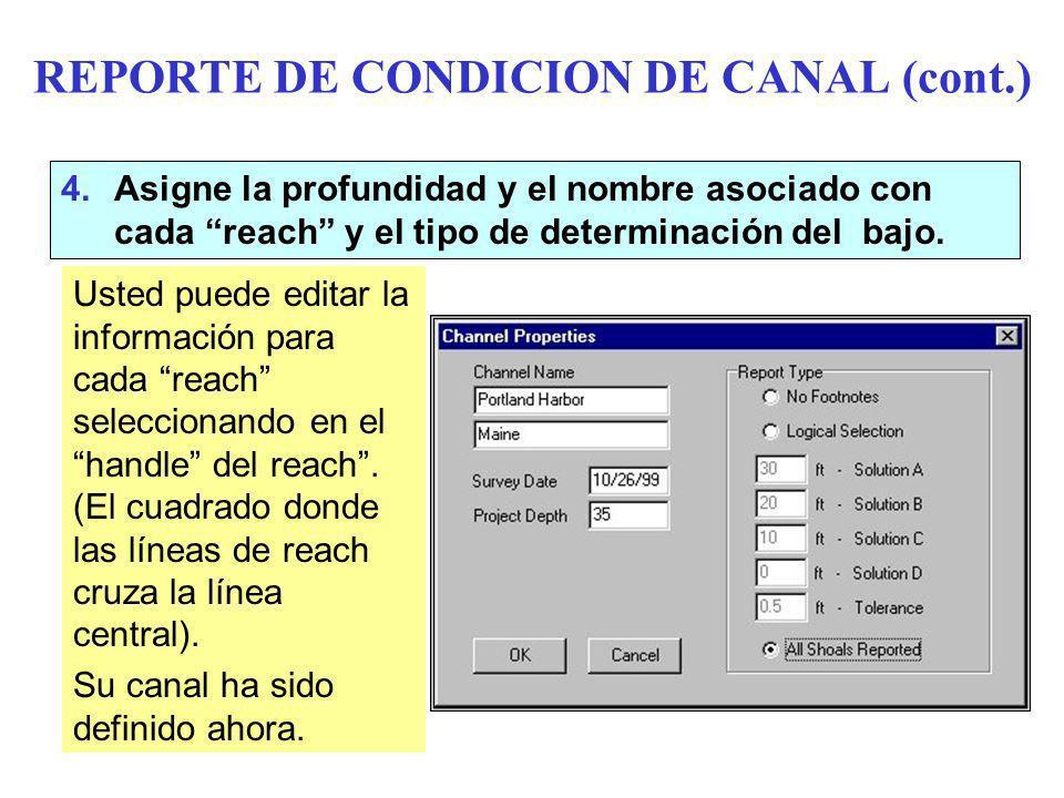 REPORTE DE CONDICION DE CANAL (cont.) 4.Asigne la profundidad y el nombre asociado con cada reach y el tipo de determinación del bajo.