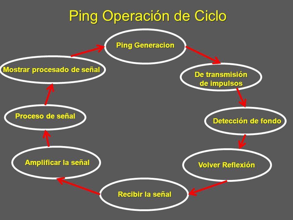 Ping Operación de Ciclo Ping Generacion De transmisión de impulsos Detección de fondo Volver Reflexión Recibir la señal Amplificar la señal Proceso de