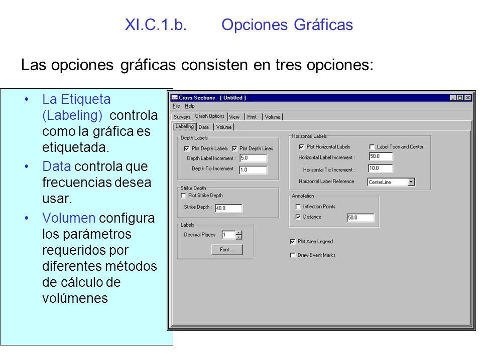 XI.C.1.c.Vista La ventana Vista despliega perfiles transversales de los datos.