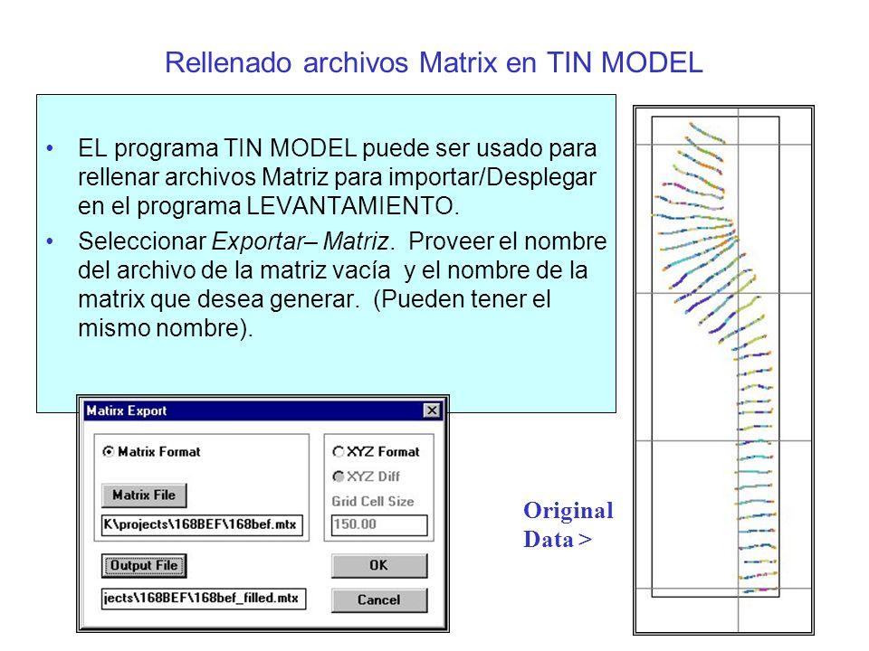 Rellenando archivos Matrix en TIN MODEL(cont.) Resultado de Matriz rellenado >