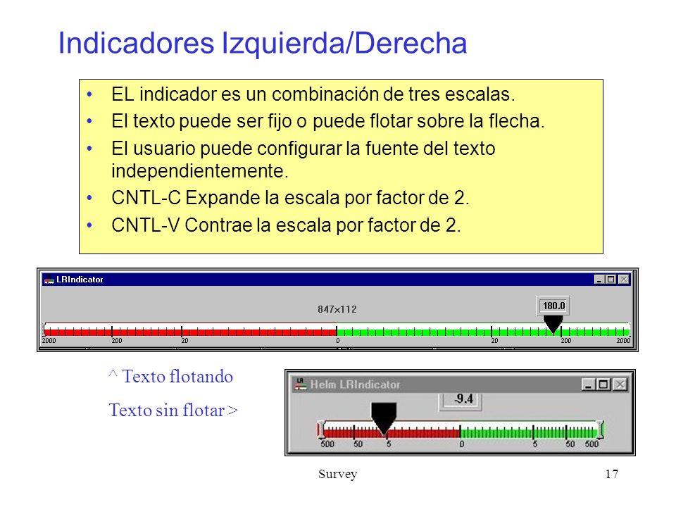 Survey17 Indicadores Izquierda/Derecha EL indicador es un combinación de tres escalas.
