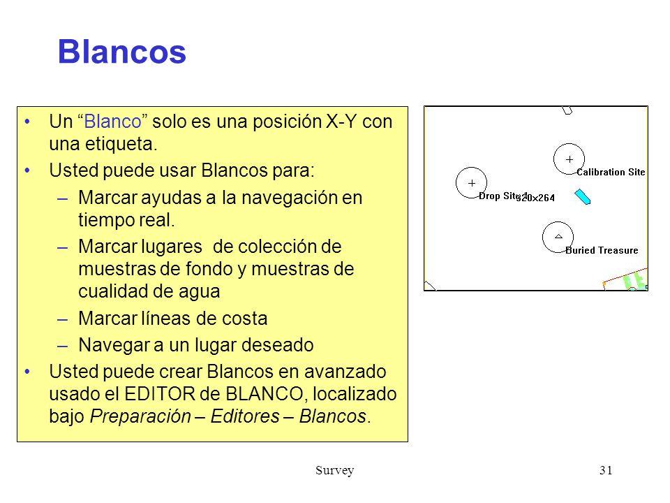 Survey31 Blancos Un Blanco solo es una posición X-Y con una etiqueta.