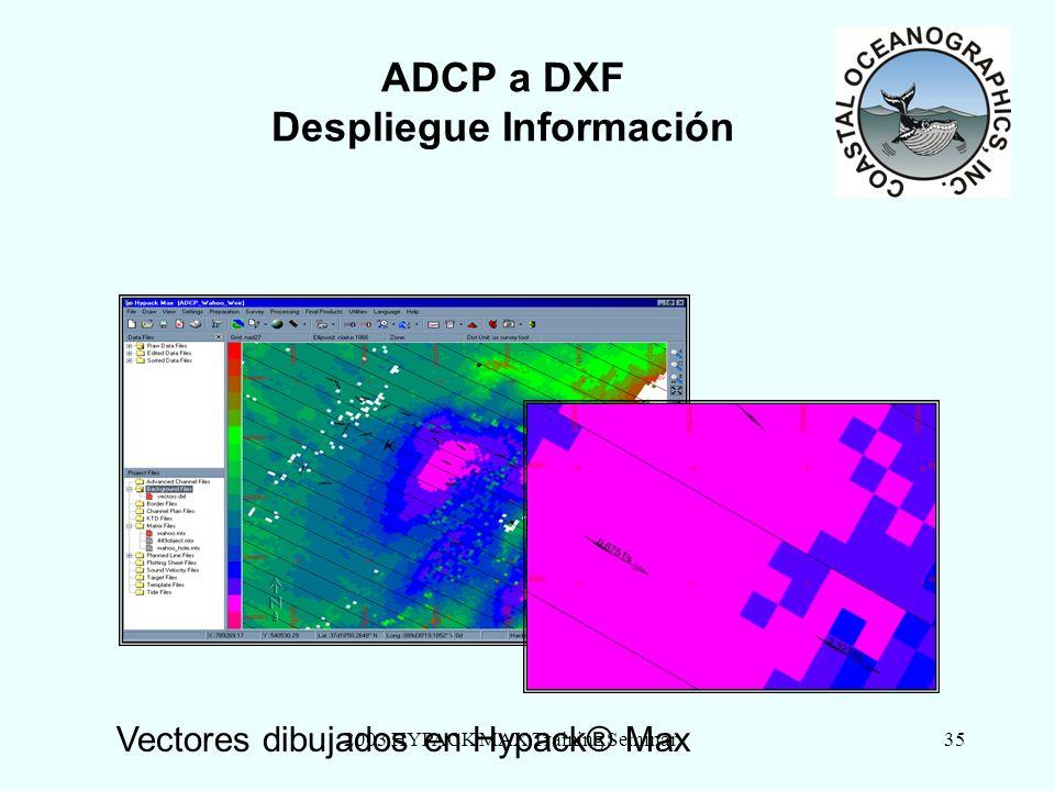 2003 HYPACK MAX Training Seminar35 ADCP a DXF Despliegue Información Vectores dibujados en Hypack® Max