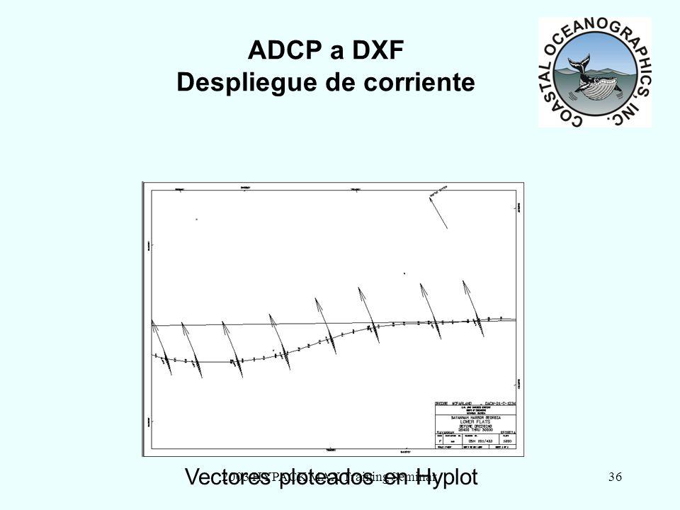 2003 HYPACK MAX Training Seminar36 ADCP a DXF Despliegue de corriente Vectores ploteados en Hyplot